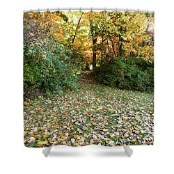 Path Entry Ahead Shower Curtain