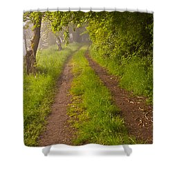 Path From Bullock Lake Shower Curtain