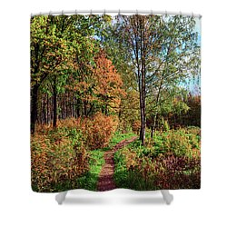 path in a beautiful country Park on a Sunny autumn day Shower Curtain