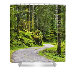 Shower Curtain featuring the photograph Path In The Forest by Yuri Santin