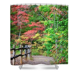 Path In The Woods Shower Curtain