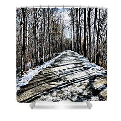 Path In Winter Shower Curtain