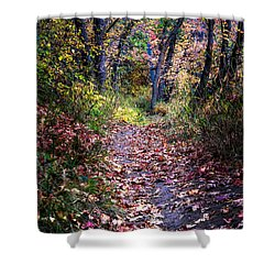 Path Of Leaves Shower Curtain