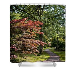 Shower Curtain featuring the photograph Path Through Autumn Forest by Scott Lyons