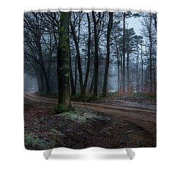 Path Through The Forrest Shower Curtain