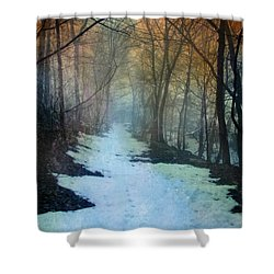 Path Through The Woods In Winter At Sunset Shower Curtain