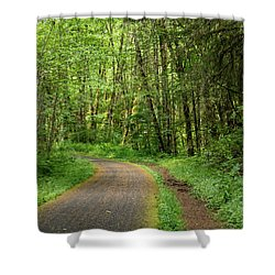 Shower Curtain featuring the photograph Path Through The Woods by Jean Noren