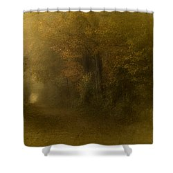 Path To Autumn Shower Curtain by Richard Cummings