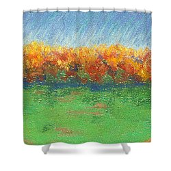 Path To Autumn Trees Shower Curtain