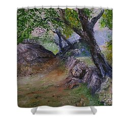 Path To Nowhere Shower Curtain
