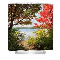 Shower Curtain featuring the photograph Path To The Lake by Elena Elisseeva