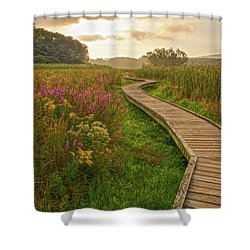 Path To The Light Shower Curtain by Angelo Marcialis