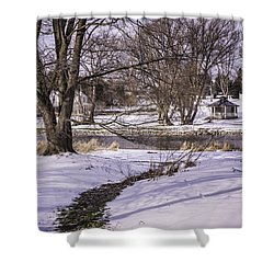 Path To The River Shower Curtain by Anne Witmer