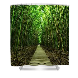 Path To Zen Shower Curtain