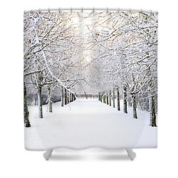 Pathway In Snow Shower Curtain by Marius Sipa