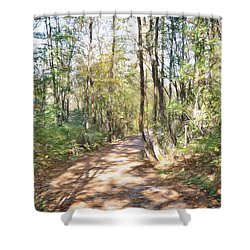 Pathway In The Woods Shower Curtain