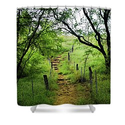 Shower Curtain featuring the photograph Pathway Of Life by Pamela Walton