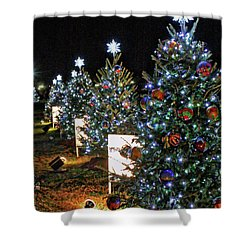 Shower Curtain featuring the photograph Pathway Of Peace by Suzanne Stout