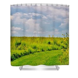 Pathway Through Wildflowers Shower Curtain