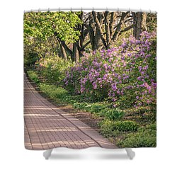 Pathway To Beauty In Lombard Shower Curtain