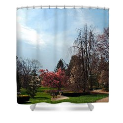 Pathway To Spring Shower Curtain by Teresa Schomig