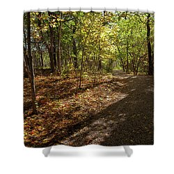 Shower Curtain featuring the photograph Pathways In Fall by Iris Greenwell