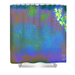 Patient Earth Shower Curtain