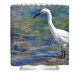 Patient Egret Shower Curtain by AJ Schibig