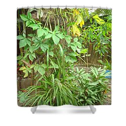 Patio 2 Shower Curtain