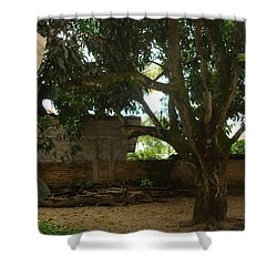 Patio 6 Shower Curtain