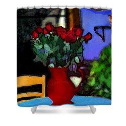 Patio Art 2  Shower Curtain