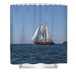 Patricia Belle 02 Shower Curtain