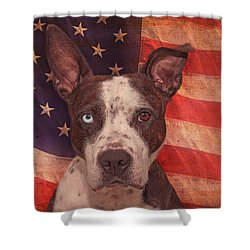 Patriotic Pit Bull  Shower Curtain by Brian Cross
