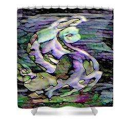 Pattern 301 _ Remarkable Moment Shower Curtain