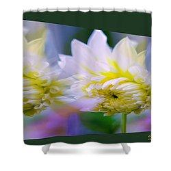 Pattern 313 _ Side Reflect Shower Curtain