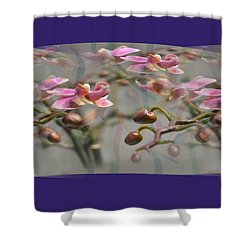 Pattern 320 _ Memory Shower Curtain