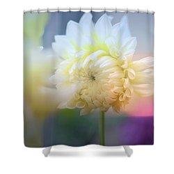Pattern 323 _ Foggy Shower Curtain