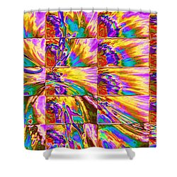 Pattern 326 _ Joy Shower Curtain