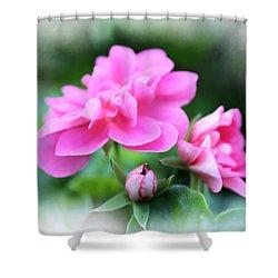 Pattern 336 _ Baby  Shower Curtain