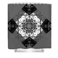 Pattern In Black White Shower Curtain