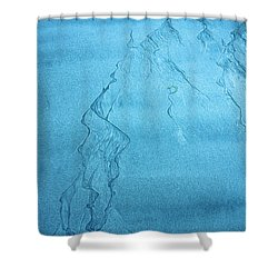 Patterns In The Sand Shower Curtain by Michele Cornelius