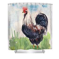 Paunchy Rooster Shower Curtain