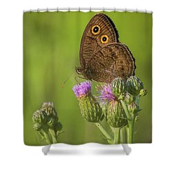 Shower Curtain featuring the photograph Pauper's Throne by Bill Pevlor