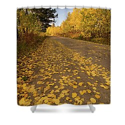 Shower Curtain featuring the photograph Paved In Gold by Steve Stuller