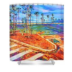 Paved Paradise Shower Curtain