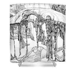 Pavilion Shower Curtain by Charles Cater