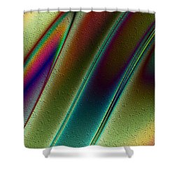 Pavo Real Shower Curtain