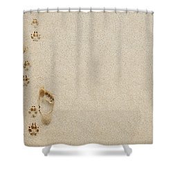 Paw And Footprint 1 Shower Curtain by Brandon Tabiolo - Printscapes