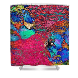 Paw Prints Colour Explosion Shower Curtain