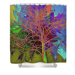 P C C Elm In The Wait Of Bloom Shower Curtain